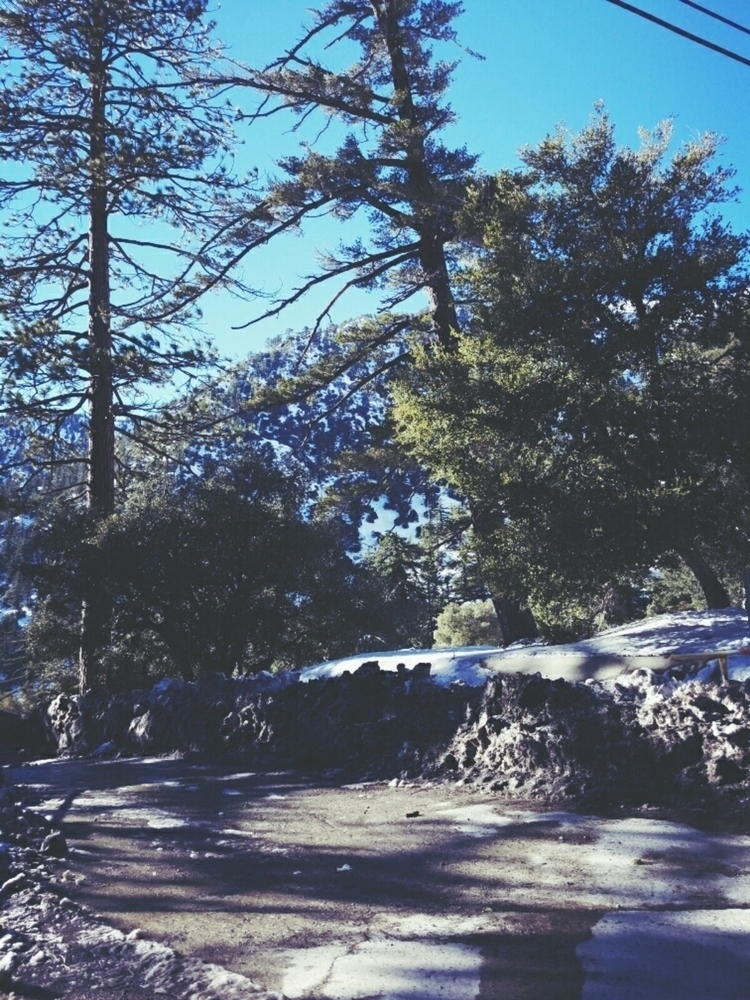 Mt. Baldy California (Winter 20 - lovee_a | ello