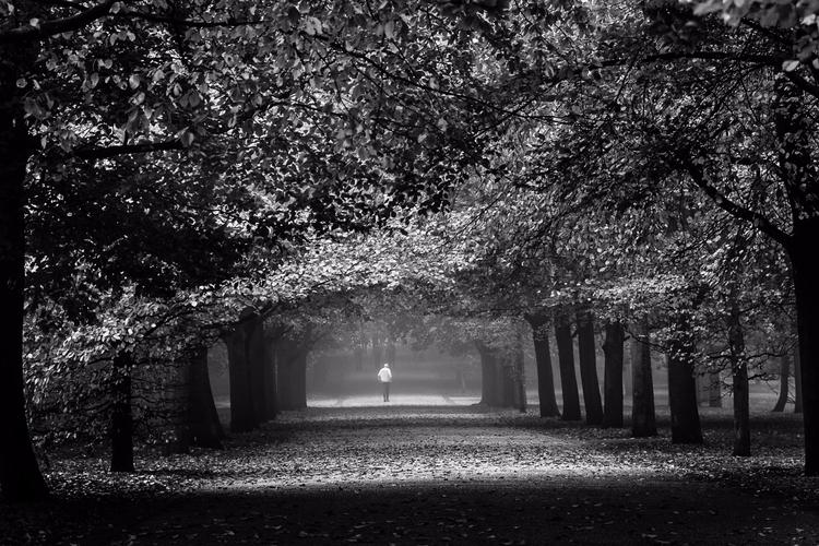 Meridian | Royal Parks - Greenwich - fabianodu | ello