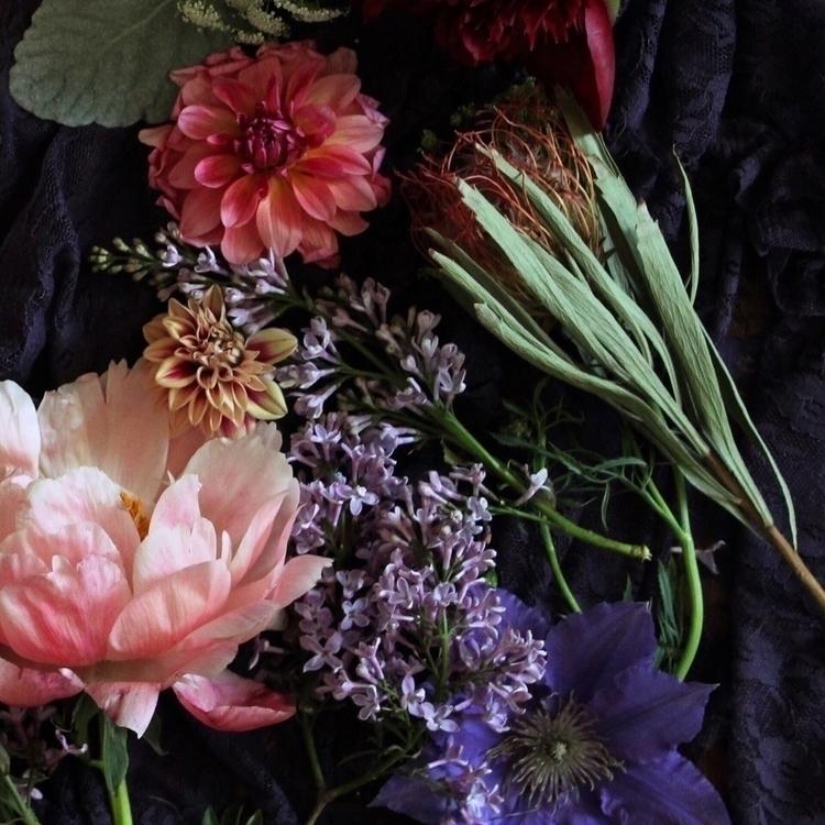 Root root, petal petal - leila_olive | ello