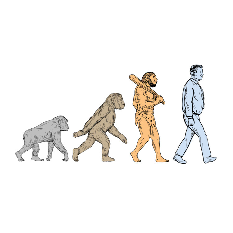 Human, Evolution, Walking, Drawing - patrimonio | ello