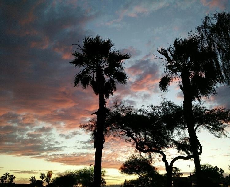 Arizona sunset - arizona, arizonasunset - littlegoldfishcreations | ello