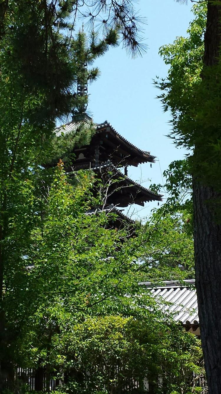 2年ぶりの奈良 法隆寺。奈良は京都とちょっと感じが違うね。まぁ - umichika | ello