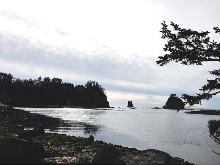 :evergreen_tree:La Push WA beau - crowandiris | ello