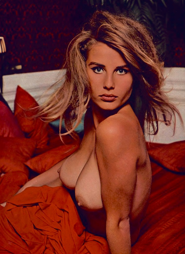 Donna Michelle - 1964 Playmate  - playboycollection | ello