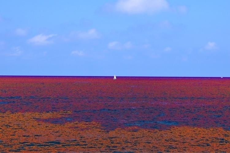 image, 2017, day, malta, sea - mishanich   ello