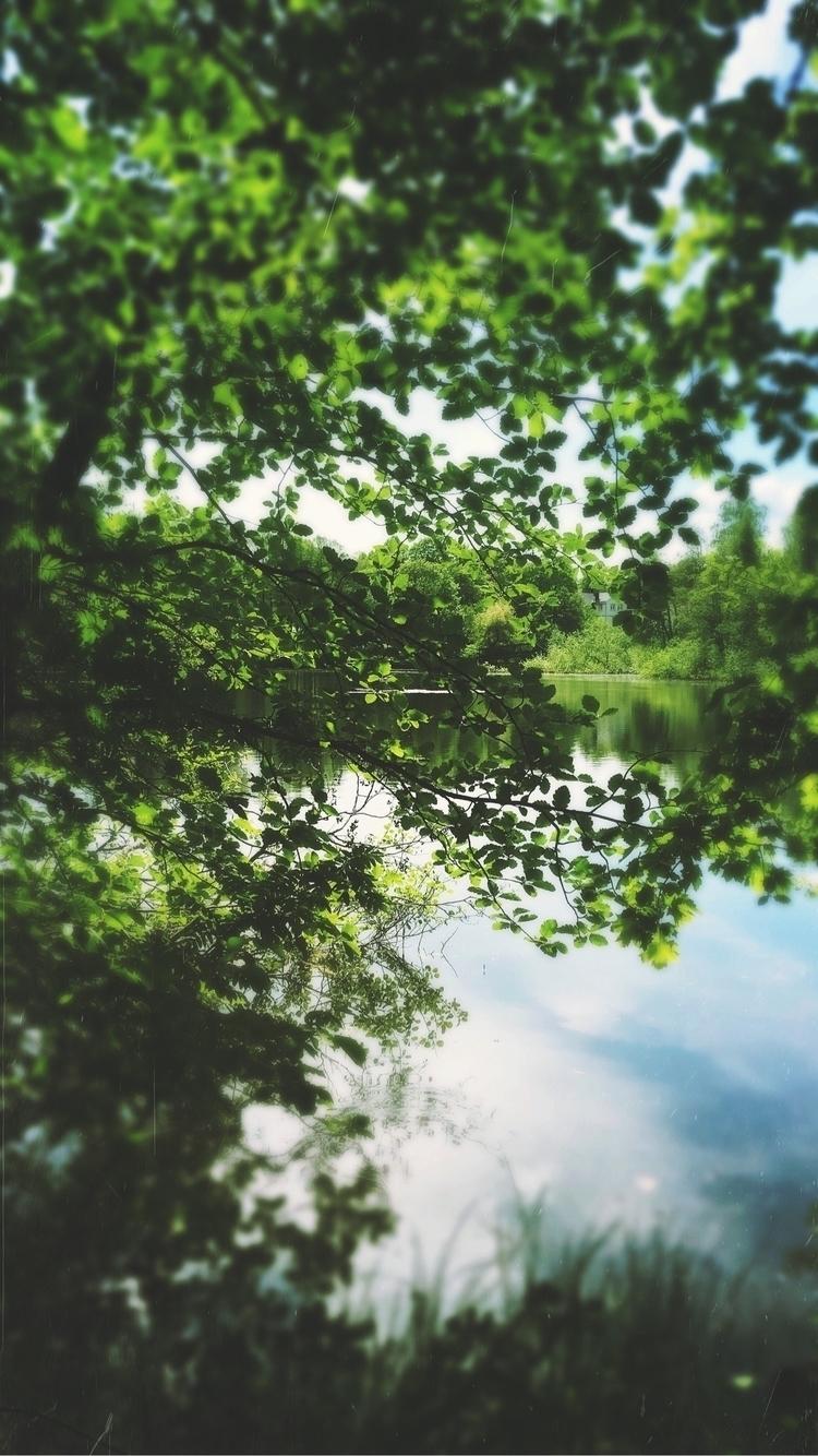 poetry Nature - walk, lake, forrest - yogiwod   ello