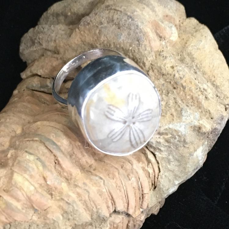 Love fossil rings  - desertnightsstudio - desertnightsstudio | ello