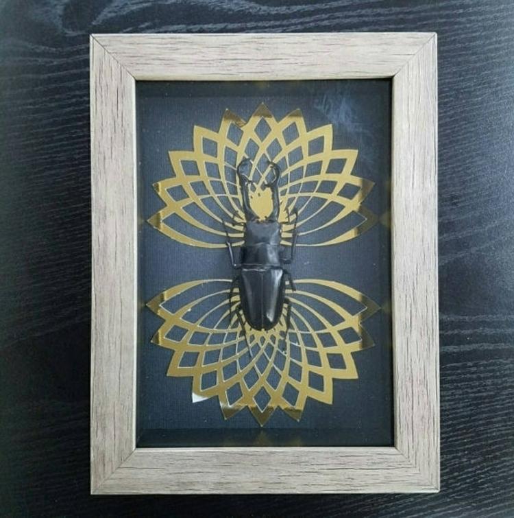 Singularity. -Large stag beetle - newdeathdisco | ello