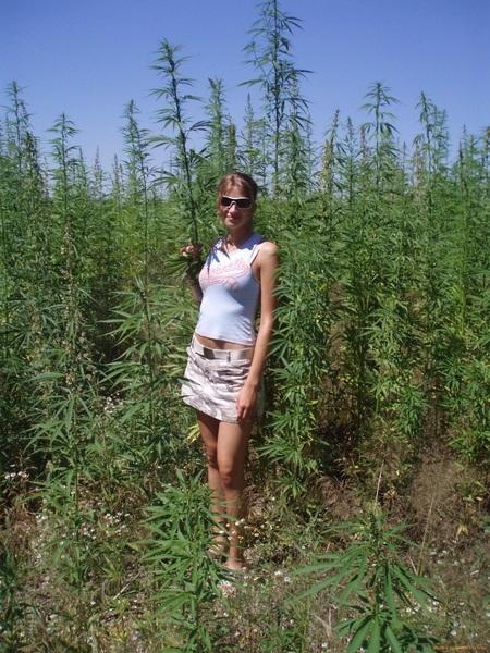 sexy cannabis - frenchmilfexhib | ello