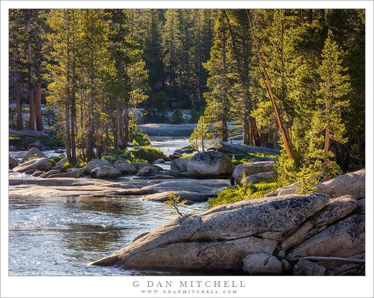 Photograph day: Summer, Sierra  - gdanmitchell | ello