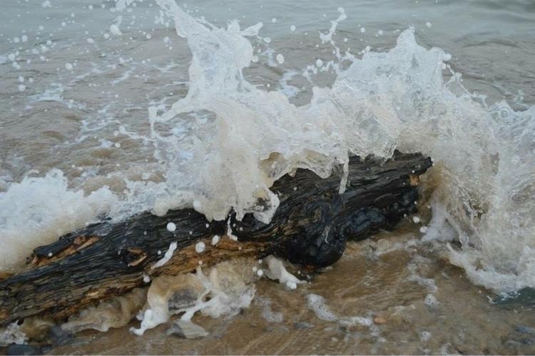 Waves crashing Driftwood - Sea, Ocean - kristalcave | ello