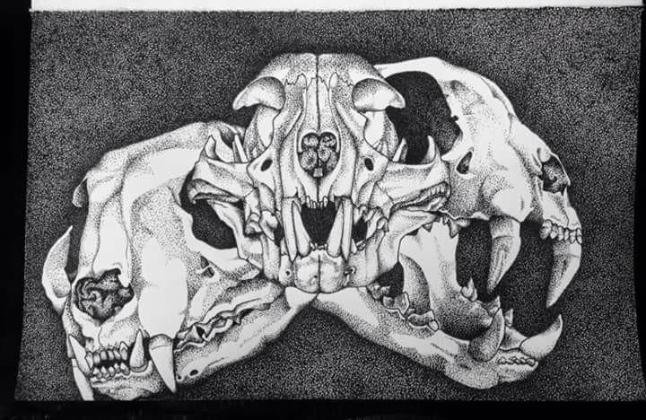Pointilism cat skulls - helvetejakthund | ello