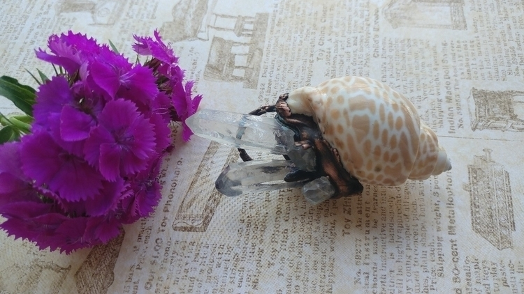 favorites! Ocean shell blooming - gnomeshiddentreasure   ello