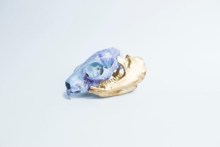 Purple Blue Marbled Hyrax Skull - glitterandbone | ello