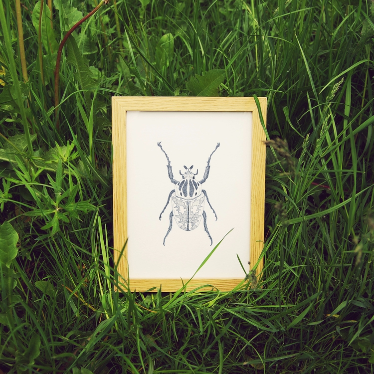 hunting caught bugs. dog - insect - efingo | ello