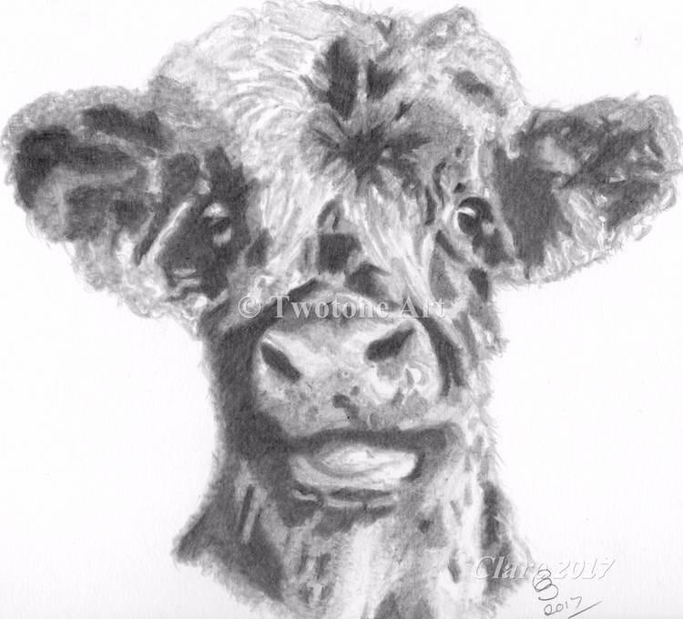 Moo Graphite Pencil - babycattle - twotoneart | ello