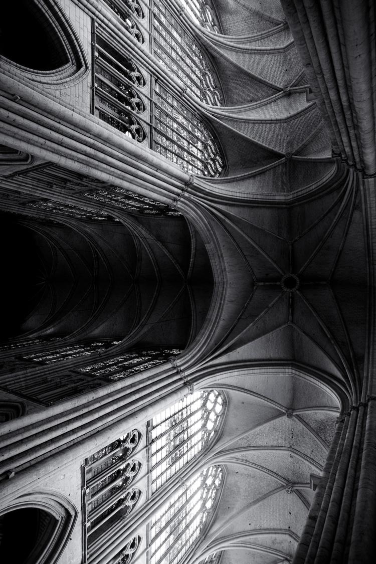48.52 Troyes Cathedral - black, white - bigkids   ello