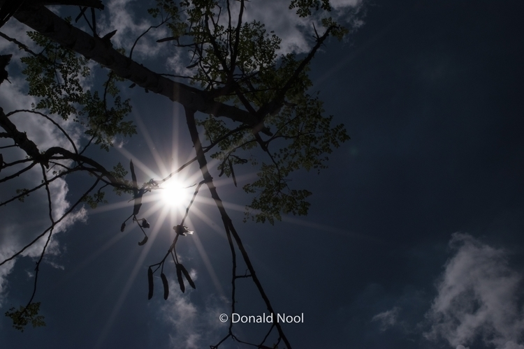 Noon Rays - philippines, life, photography - donaldnool | ello