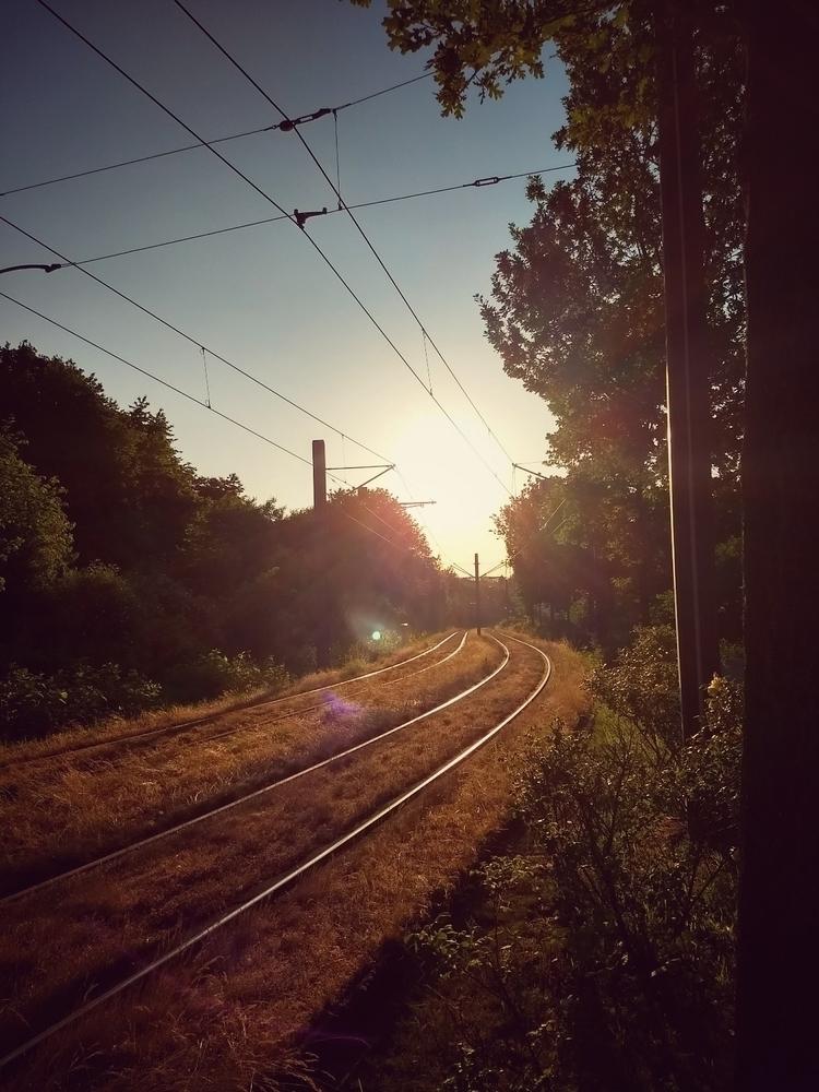 tram, rails, sun, sunny, warm - claudio_g_c | ello