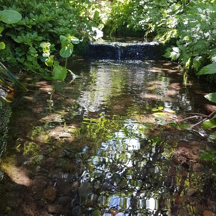 lovely stream - photography, followme - ridles_photography | ello
