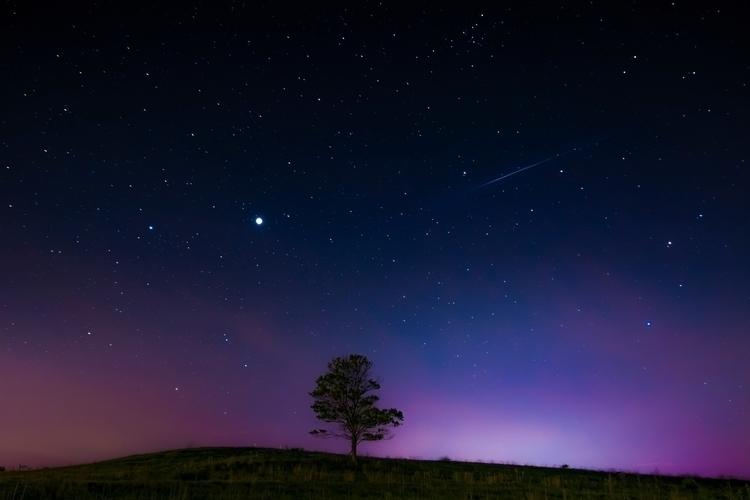 Meteor tree... lights - vermont - markcollier | ello