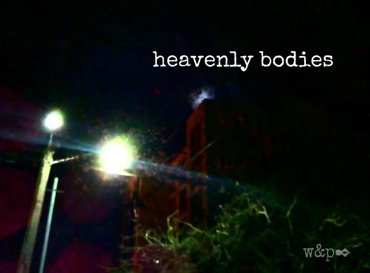 > Heavenly Bodies dark trees - whiskeyandpens | ello