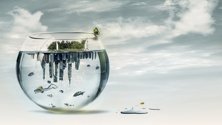Aquarium world - photoshop, water - zepaulocreation | ello