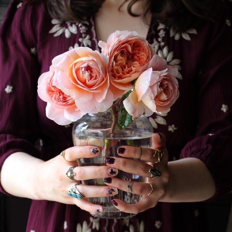 Rose magic Full Moon - leila_olive | ello