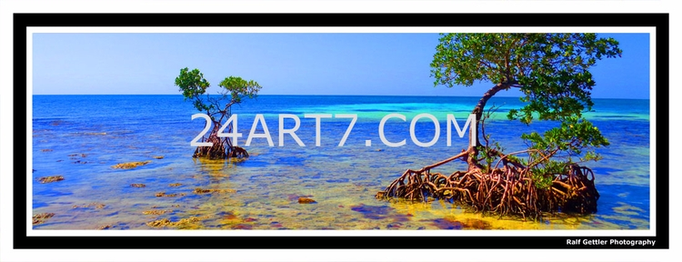photography artwork - enjoy  - ralfgettler | ello