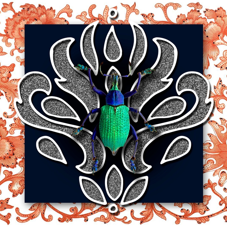 Green Beetle (2017 - collageart - gloriasanchez | ello