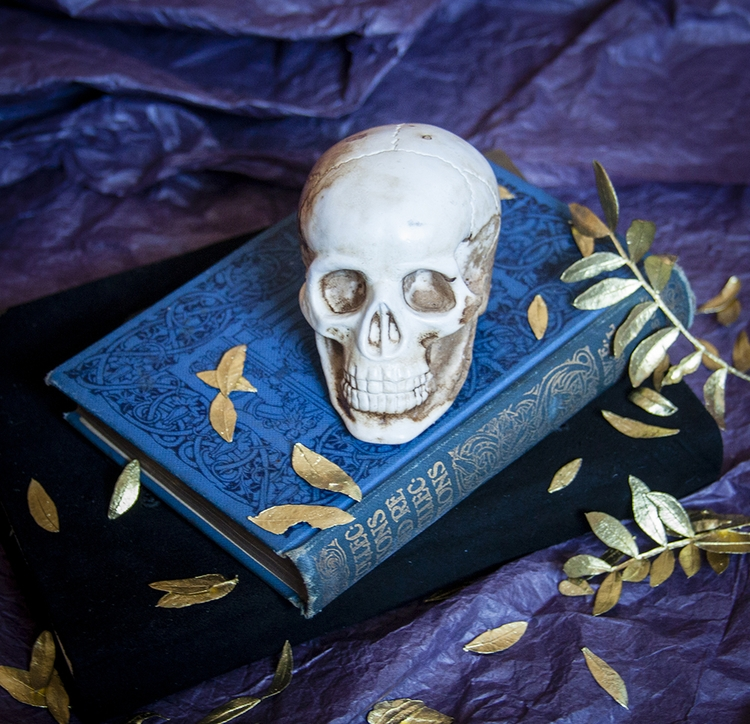 skull, books, bones, flower, skeleton - dustyburrow | ello