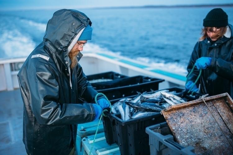 [Blue blue fisherman friend Sim - jonathonreed | ello