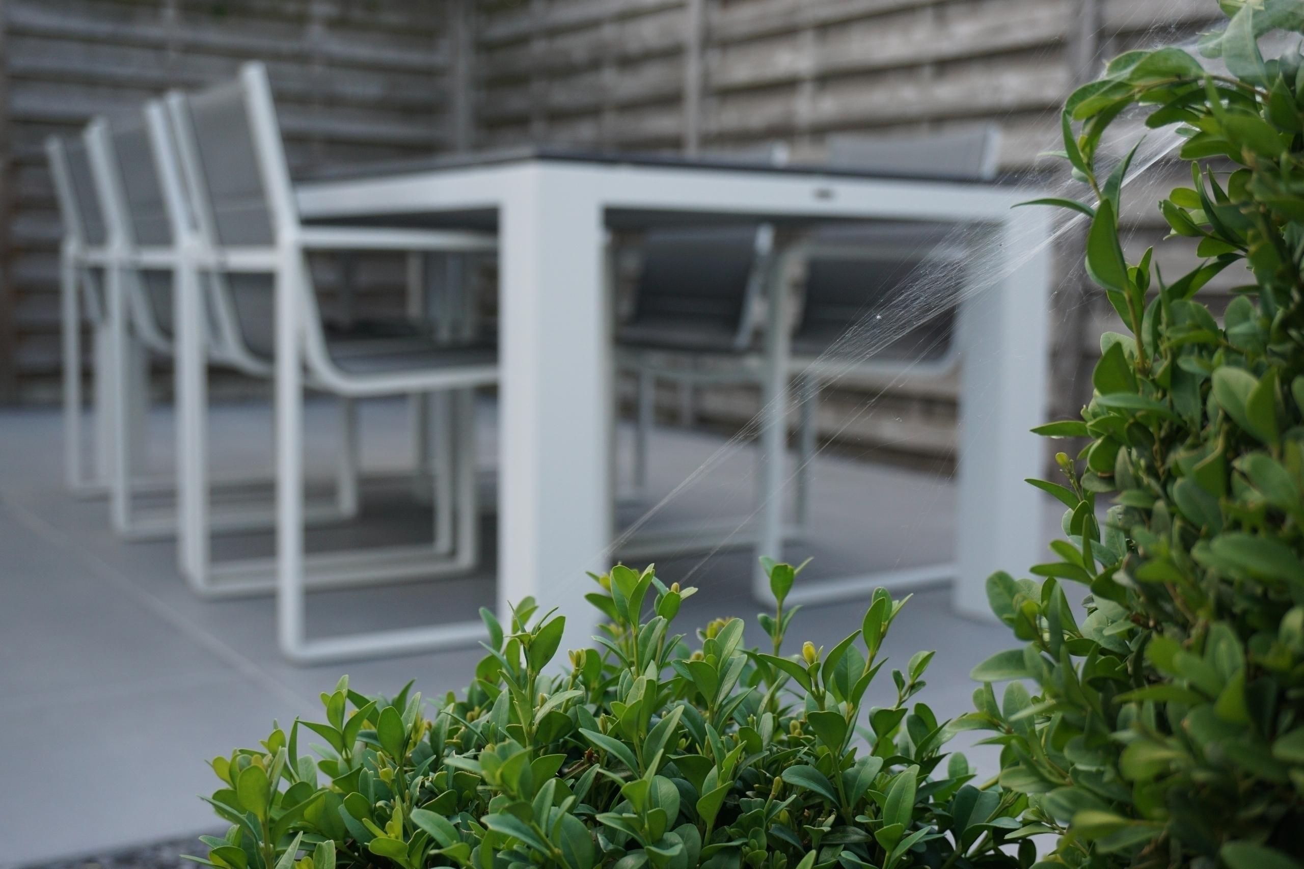 Web garden - bartvancoillie | ello