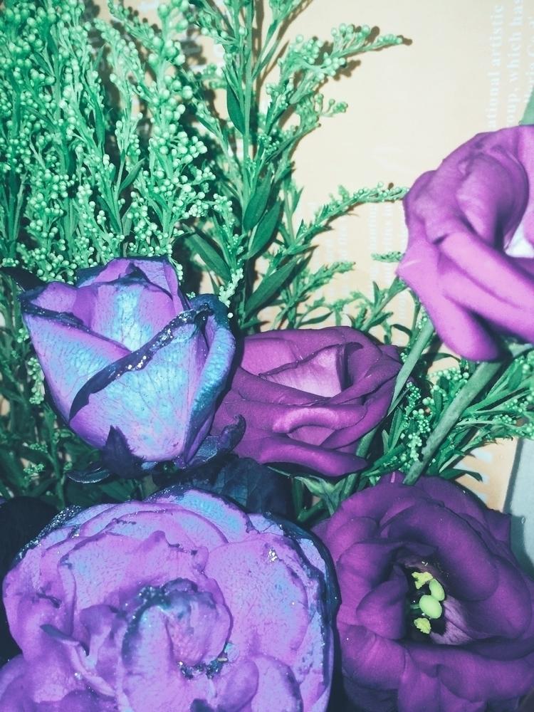 Flower - omei55 | ello