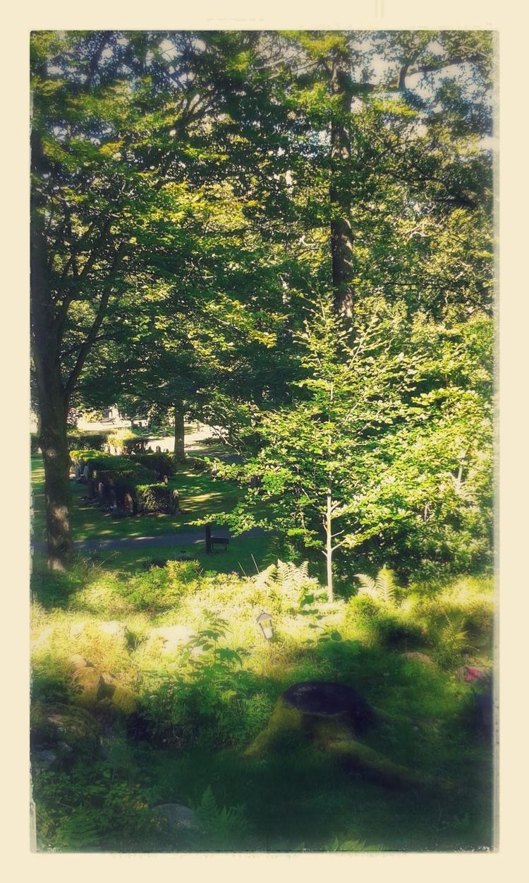 Naturskön äro Skogskyrkogården  - skogskyrkogardar | ello