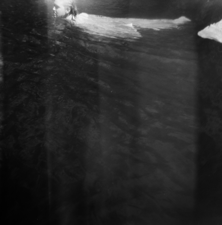 Ghostbird - photography, emilyweeks - emilyweeks | ello