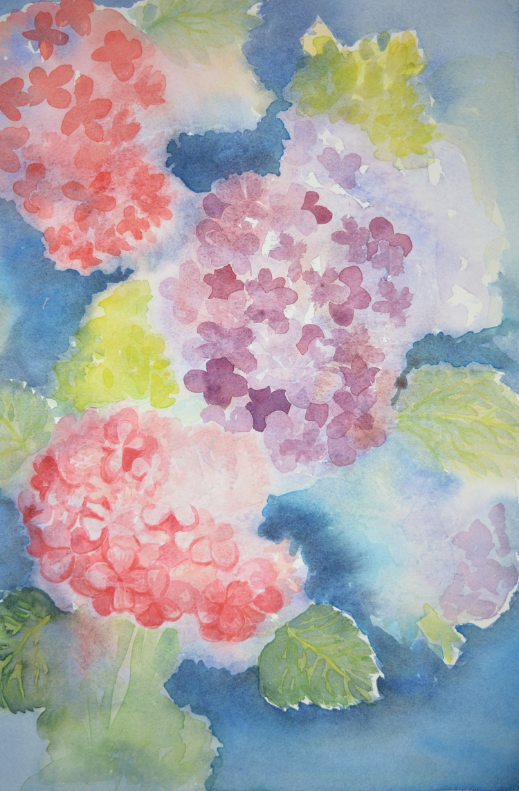 Floral Study Watercolour - euric | ello