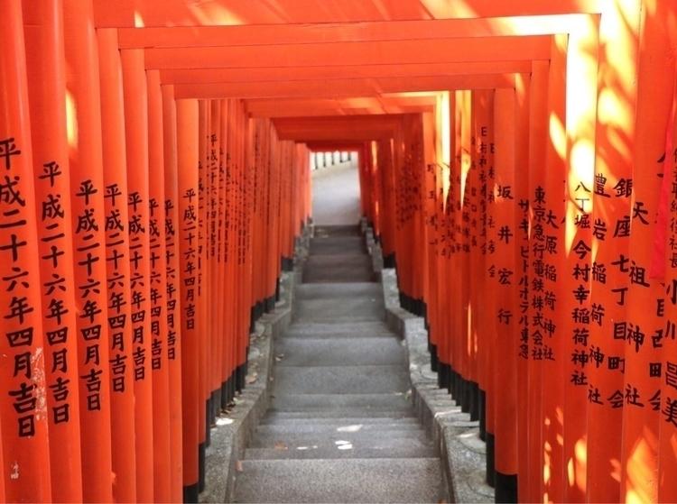 Torii - japan, tokyo - waygaijin   ello