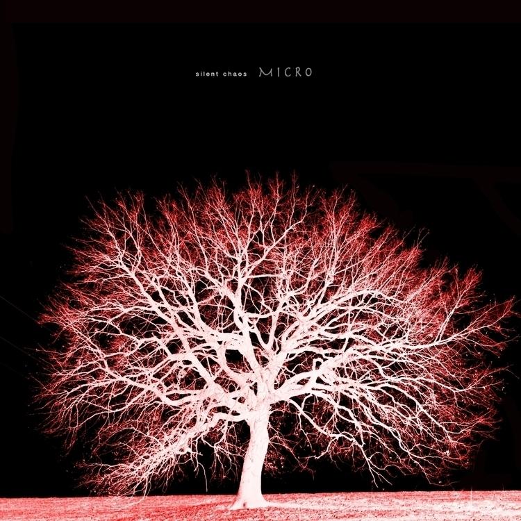 review debut album micro center - silentchaosproject | ello