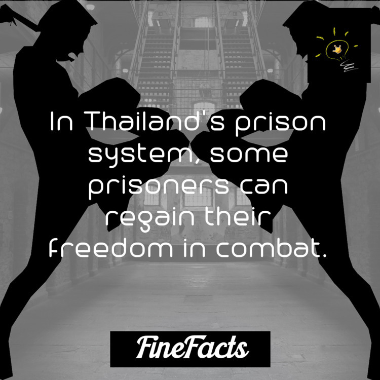prison system, prisoners regain - finefacts | ello