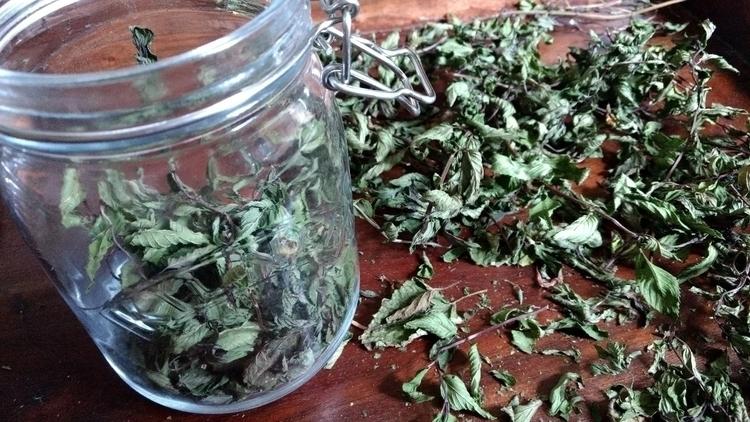freshest herbs Delicious fresh  - naturalwitchapothecary | ello