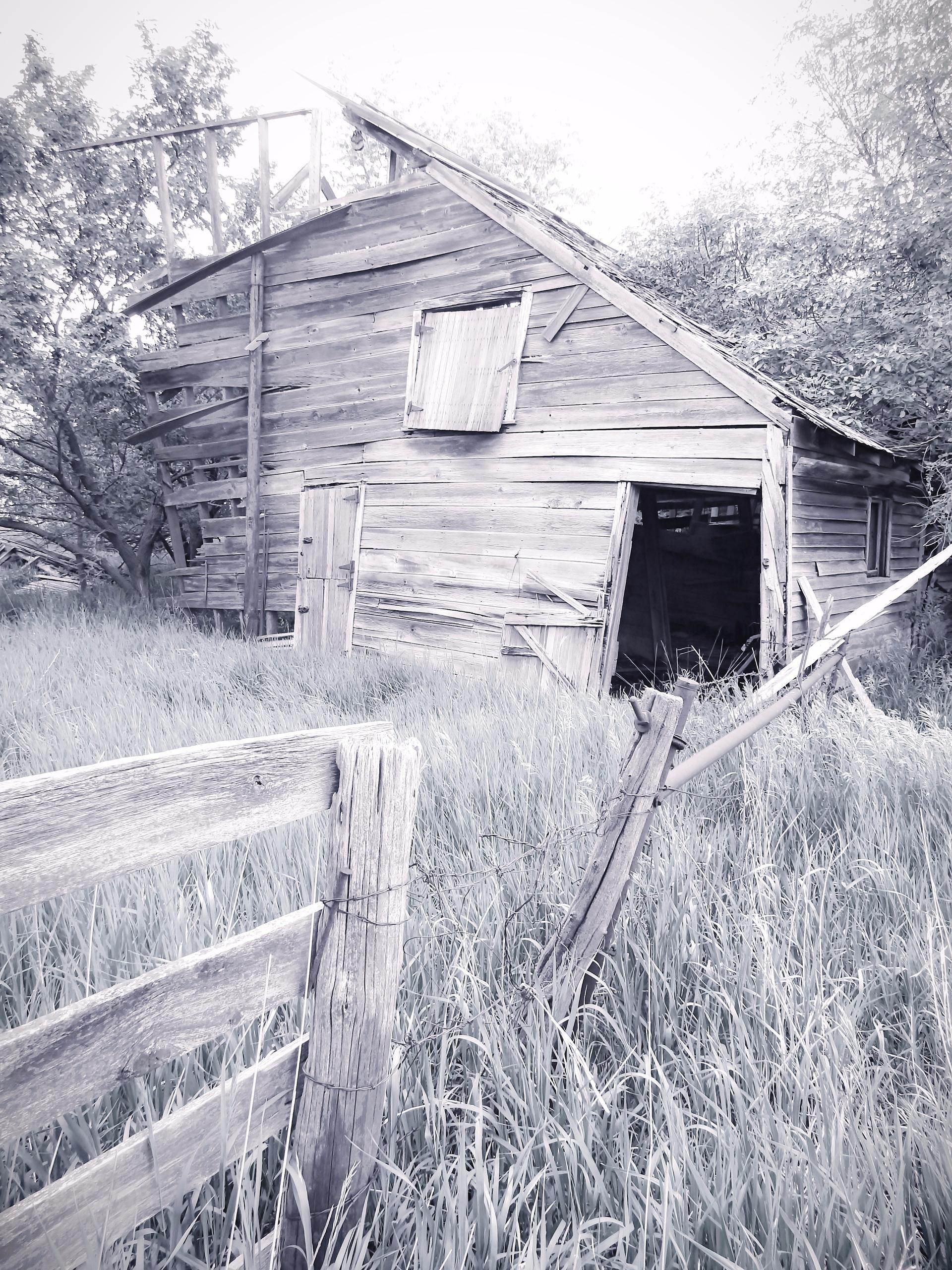 rurex, abandoned - trentonleetiemeyer | ello