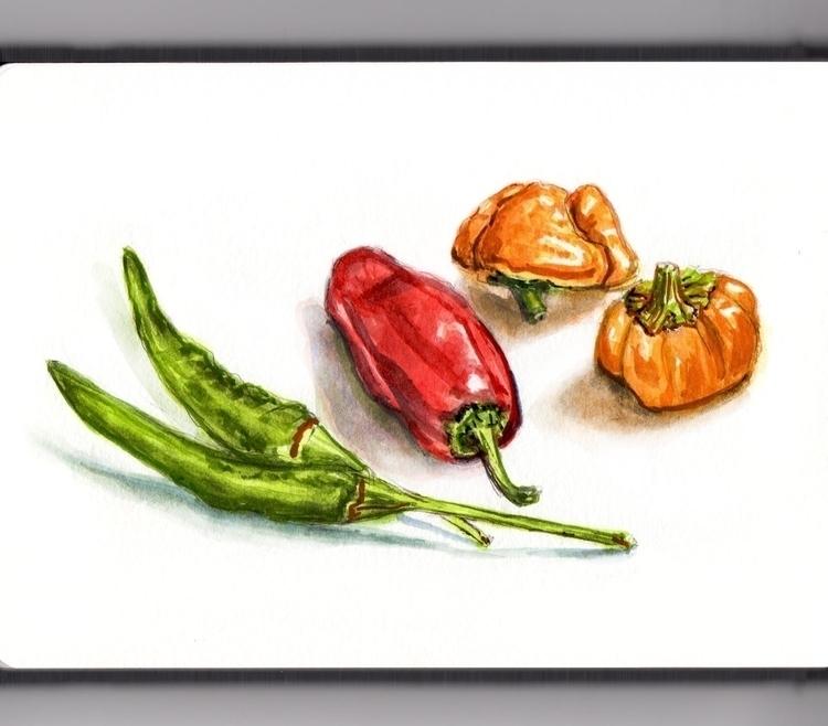 Hot Peppers - watercolor, watercolour - doodlewash | ello