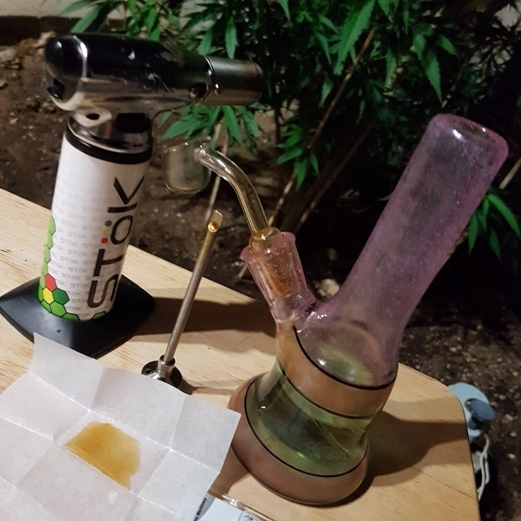 Late night sesh gardening - growyourown - hazyfingerz | ello