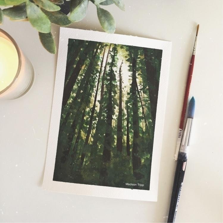 Gouache watercolour forest pain - madisontripp | ello