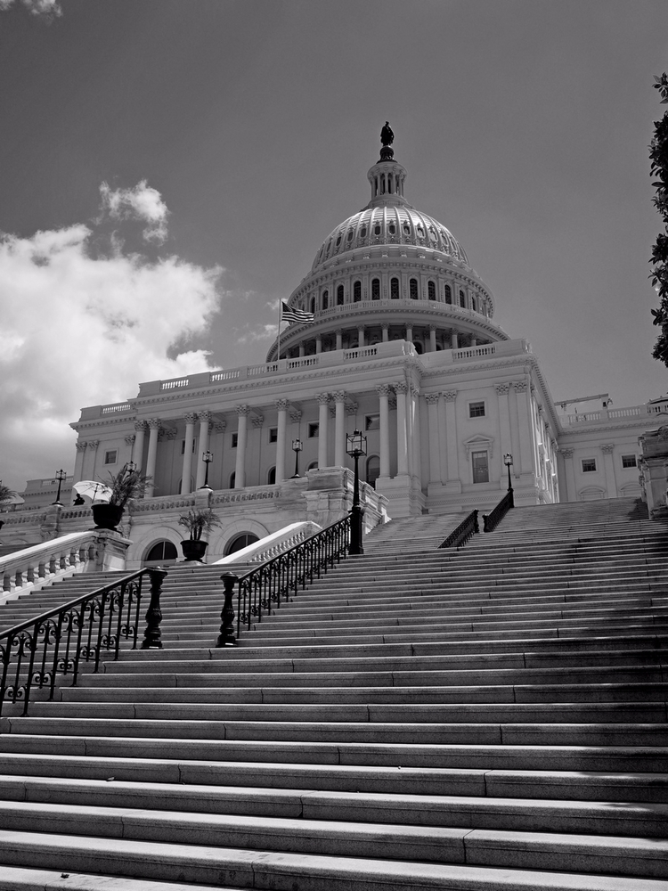Capitol - jasmac | ello