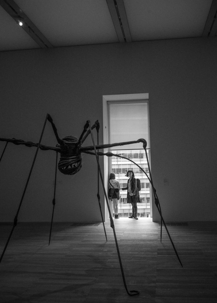 Mandy, spiders - bradverts   ello