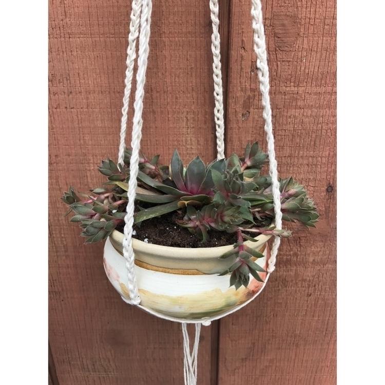 succulent&gt - plant, planter, ceramic - muddynature_pottery | ello