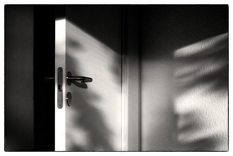 Evening Light II - PentaxK3II - sselvejer | ello