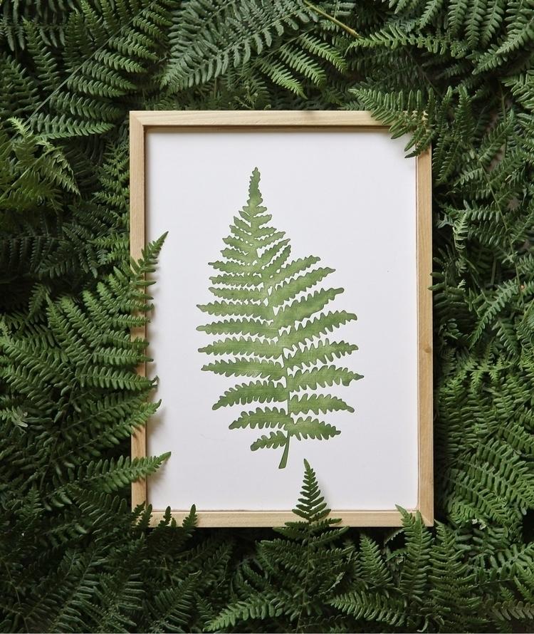 Ferns ferns - elloartist - eastplum | ello